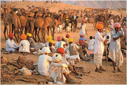 pushkar-fair-special-day1g